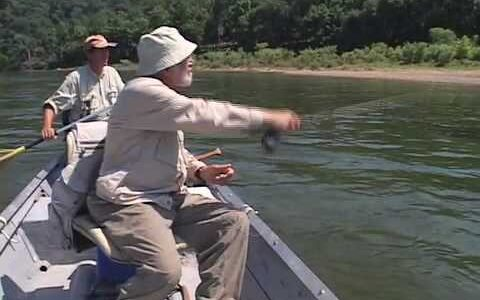 Tips for New and Experienced Fly Fishers
