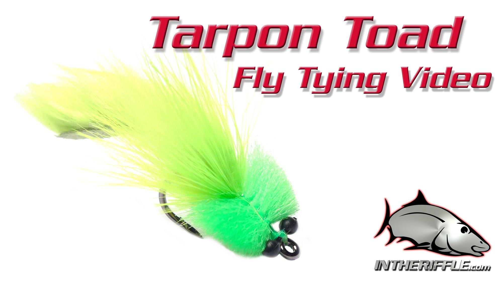 Tarpon toad - Intheriffle.com