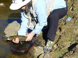 Dawn releasing one of her 7 Rainbow Trout