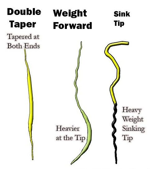 Fly line diagram