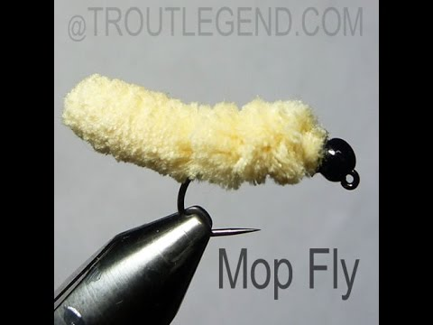 30 second Mop Fly