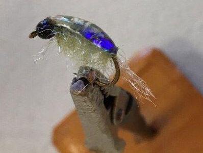 Hendo's Flea Fly
