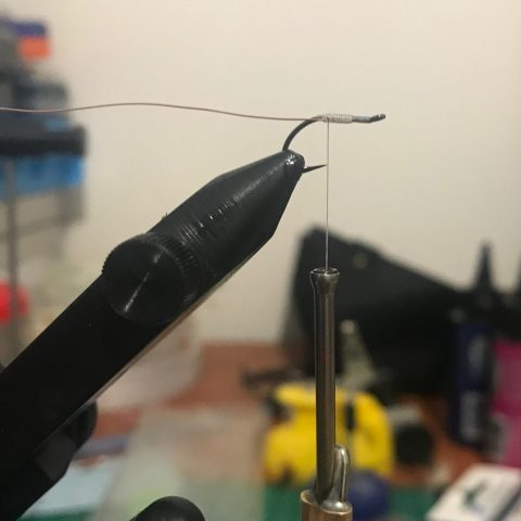 Hendo's Flea Fly, step 1