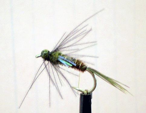 Bead Head Hastings River Mayfly